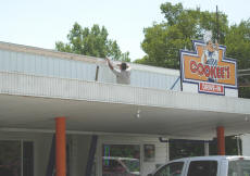 Painting The Roof At Cookees Drive-In 2008